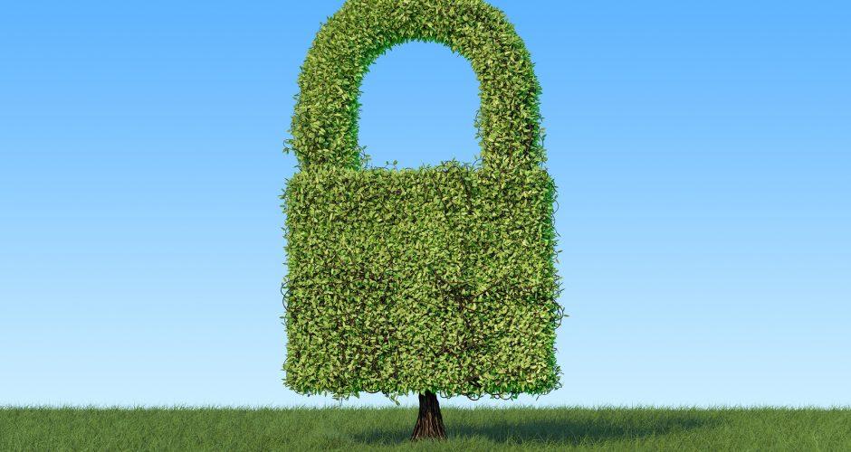 HTTPS Phishing: 49% of Phishing Websites now sport the green padlock