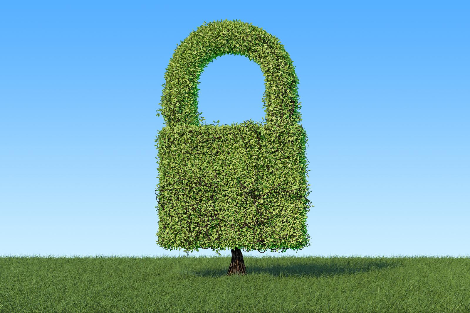 HTTPS Phishing: 49% of Phishing Websites now sport the green