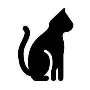 Bleichenbacher's CAT