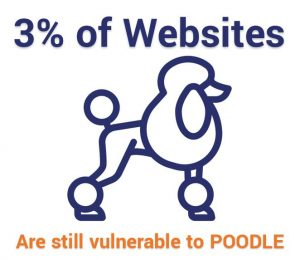 Chỉ 3% các trang web vẫn dễ bị POODLE
