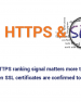 A broken SSL certificate will hurt your SEO