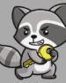Raccoon Attack: Researchers Find A Vulnerability in TLS 1.2