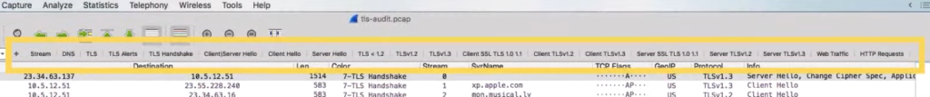 A screenshot of the TLS audit window