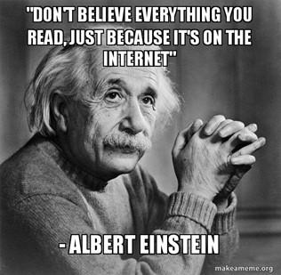 "Don't believe everything you read, just because it's on the internet"" -  Albert Einstein - Serious Albert Einstein | Make a Meme"