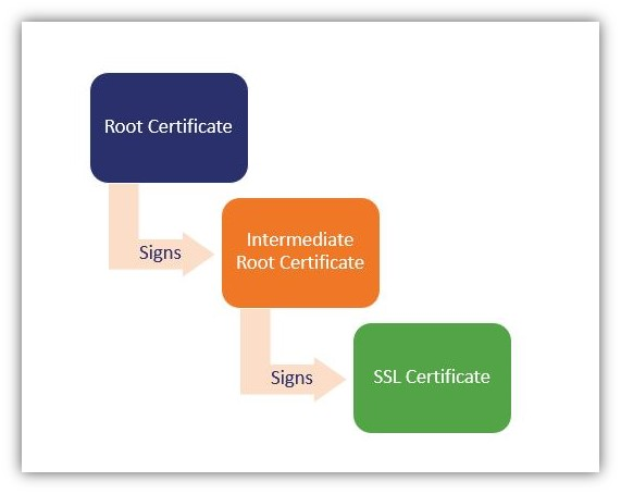 How to become a certificate authority graphic #2: A diagram that breaks down the SSL/TLS chain of trust