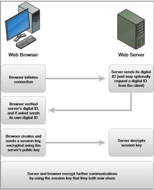 Server SSL Certificate for Exchange, Microsoft IIS, Apache