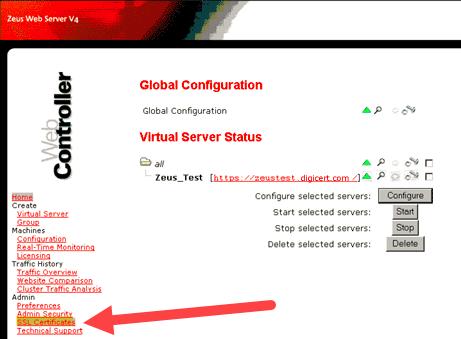 Virtual Server Status